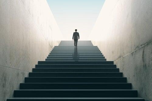 Истории сотрудников TFL: карьерный и личностный рост без постоянной смены работы